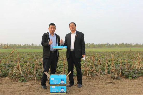 焦裕禄书记帮这个村治了沙 小蓝帽增产药助乡亲们产业跨越性发展