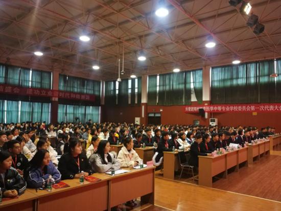 共青团郑州树青医学中等专业学校委员会第一次代表大会胜利召开