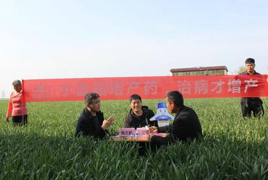 """小蓝帽治病增产""""皖北粮仓"""":收割机走个单趟就满仓 亩增200斤"""
