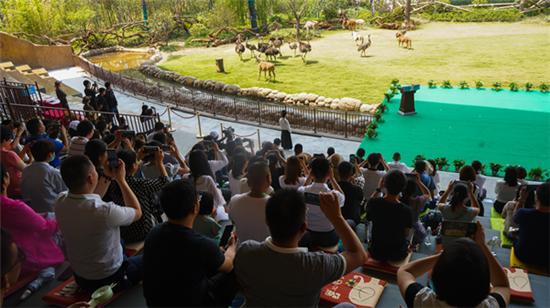 7月15日盛大开业!神奇动物见证银基动物王国战略客户签约仪式