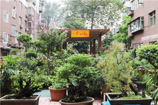 """【郑在蝶变】通信花园社区:居民称它为""""幸福的家园"""""""